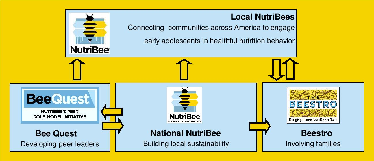 nutribee diagram for web